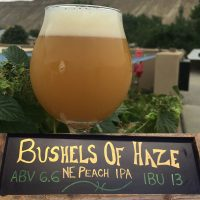 Bushel of Haze New England Peach IPA